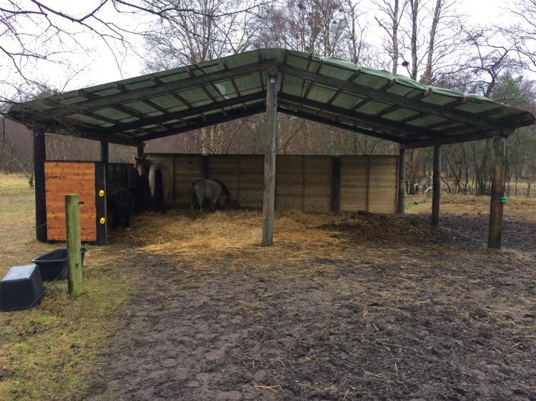 NVHI-11, Vestre Himmerigvej 11, Nordmarken, Læsø