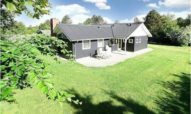 Ferienhaus 05510 - Dänemark