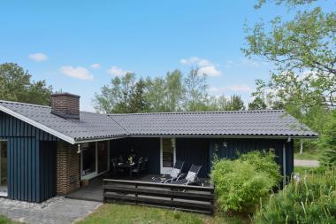 Ferienhaus 3151 - Dänemark