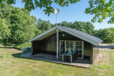 Ferienhaus 4147 - Dänemark