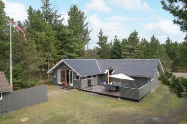 Ferienhaus 3133 - Dänemark