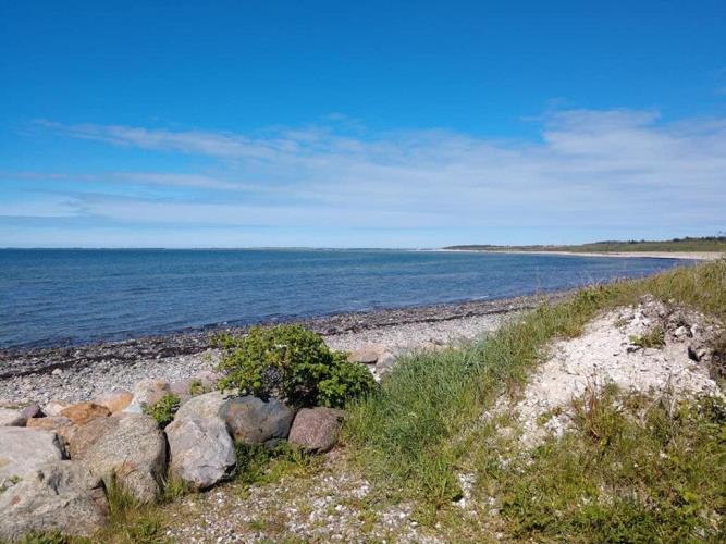 70045, Lendrup Strand, Løgstør